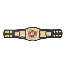 WWE Rated-R Spinner Championship Mini Replica Title Belt