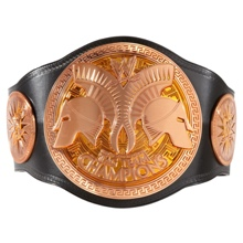 WWE Kids Tag Team Championship Replica Title Belt