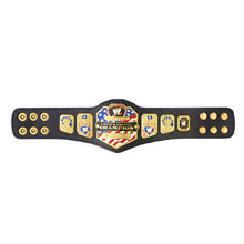 WWE United States Championship Mini Replica Title Belt