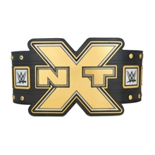 NXT Championship Replica Title Belt (2014)