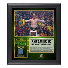 Sheamus Money in the Bank 15  x 17 Framed Ring Canvas Photo Collage
