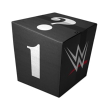 WWE Mystery Men's T-Shirt Box #1