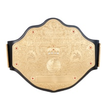 WCW Heavyweight Championship Replica Title