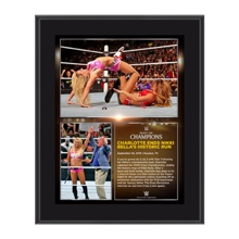 Charlotte Night of Champions 2015 10.5 x 13 Photo Collage Plaque