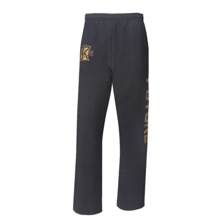 "Seth Rollins ""Undisputed Future"" Sweatpants"
