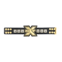 NXT Championship Mini Replica Belt