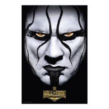 "Sting ""Hall of Fame 2016"" 24 x 36 Poster"