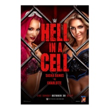 WWE Hell in a Cell 2016 Poster
