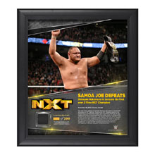 Samoa Joe TakeOver Toronto 15 x 17 Framed Plaque w/ Ring Canvas