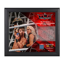 The Miz TLC 2016 15 x 17 Framed Plaque w/ Ring Canvas