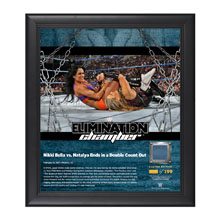 Nikki Bella & Natalya Elimination Chamber 2017 15 x 17 Framed Plaque w/ Ring Canvas