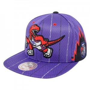 """Toronto Raptors Hardwood Classics Jersey Hook Up Mesh Crown Snapback C"""
