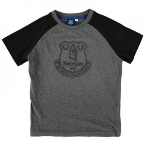 Everton Essentials Raglan T-Shirt - Grey Marl/Black - Junior