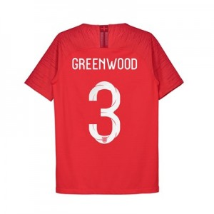 England Away Vapor Match Shirt 2018 - Kids with Greenwood 3 printing