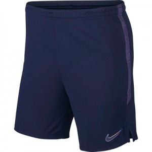 Tottenham Hotspur Strike Training Shorts - Blue