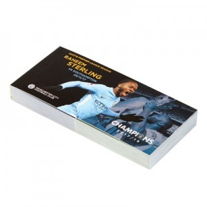 Manchester City 2017-18 Champions Raheem Sterling Goal Flip Book