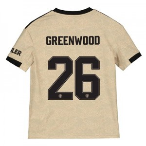 Manchester United Cup Away Shirt 2019 - 20 - Kids with Greenwood 26 printing