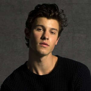 Shawn Mendes (Show Lounge) Ticket